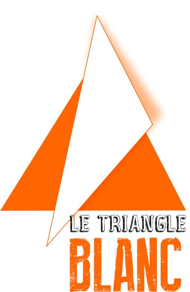 logo triangle blanc
